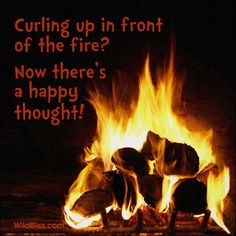 A happy thought for a November evening! ~ IanB ~ WildBliss.com
