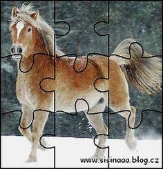 www.sisinaaa.blog.cz - puzzle