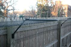 Purr...fect Fence - Keeping Cats Happy and Safe... Outdoors