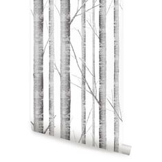 Birch Tree Peel & Stick Fabric Wallpaper Repositionable - Simple Shapes Wall Decals, Furniture, and Accessories Wallpaper Panels, Fabric Wallpaper, Tile Wallpaper, Nursery Wallpaper, Botanical Wallpaper, Wallpaper Size, Birch Tree Wallpaper, Traditional Wallpaper, Contemporary Wallpaper