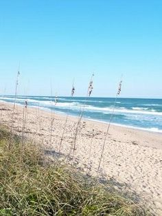 New Smyrna Beach, FL  #journey Use promo code here for best rates at Moontide... Http://TheMoontide.blogspot.com