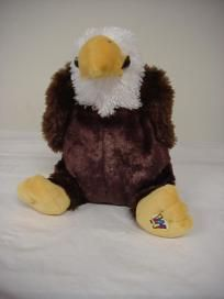 Eagle webkinz!!!!!!!!! I named him George cuz the first president of the United States was George and the eagle is the bird symbol thingy for America. Yeah. I know I'm cool.