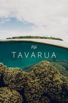 Beautiful travel story from Fiji - story by Chris Park on Steller