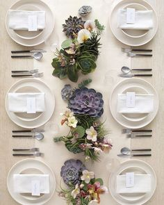 martha stewart weddings succulent arrangement - Google Search