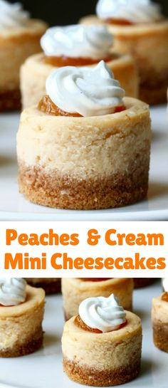 These peaches and cream mini cheesecakes are also creamy and subtly flavored with peach puree. I topped them with a dab of peach jam and a swirl of whipped cream. Peach Cheesecake, Mini Cheesecake Recipes, Cheesecake Bites, Mini Desserts, Just Desserts, Delicious Desserts, Dessert Recipes, Strawberry Cheesecake, Cheesecake Cupcakes