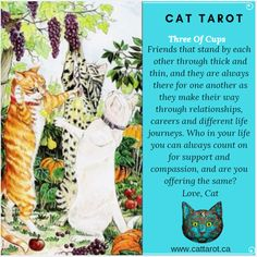 Monthly readings on my YouTube channel: www.youtube.com/c/cattarot Book your reading: www.cattarot.ca Love, Cat #tarot #tarotcards Tarot Cards, Channel, Relationship, Reading, Cats, Youtube, Books, Life, Tarot Card Decks