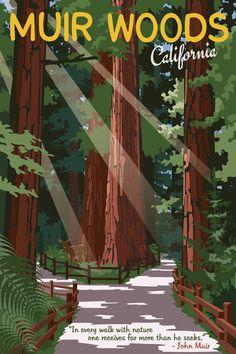Muir Woods Giclee Art