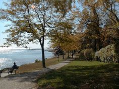 Oakville, Ontario. Lived here twice.