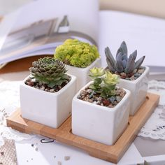 5pcs/set Minimalist Cube Flowerpot White Ceramic Succulent Plant Pot with Bamboo Stand Bonsai Planter Garden Supply Home Decor