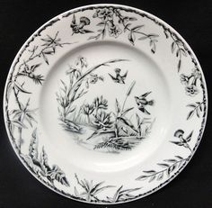 """ INDUS "" AESTHETIC TRANSFERWARE PLATE ~ EXOTIC BIRDS 1885"
