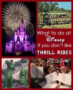 Not everyone loves the speed, drops and quick turns of Disney's thrill rides. If you are planning a Disney vacation sans thrills, here are some fun things to do that won't leave your stomach in knots!