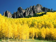 Colorado. @Samantha Feilen there something for your yellow board. don't say i dont do anything nice...