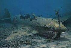 "Randall Scott Limited Edition Print:""Warhawk Reef-P-40N"""