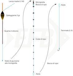 Bolognese: montatura per galleggiante fisso (spallinata intercambiabile)