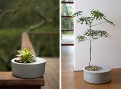 Look: Gorgeous and Modern Planters! — Austin