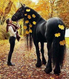 Fries paard met herfsbladeren