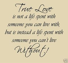 True Love Wall Quotes Words Verses Stickers New LQQK