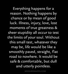 Everything happens for a reason. Nothing happens by chance or by mean of good luck. Illness, injury, love, lost moments of true greatness & sheer stupidity all occur to test the limits of your soul. Without this small test, whatever they may be, life would be like a smoothly paved, straight, flat road to nowhere. It would be safe and comfortable, but dull and utterly pointless. ~unknown