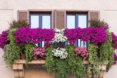Экология потребления. Дом: Пусть это не королевские сады, а всего лишь маленький райский уголок на вашем балконе, все равно лучше места, чтобы расслабиться...