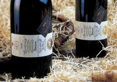 Wine label design by Tomaz Plahuta
