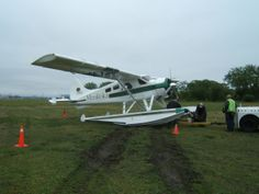 Rick flying DTZ gear up Toronto Island, did a good job of landing her