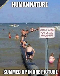 Hilarious Pictures of the day, 75 images. Human Nature Summed Up In One Picture
