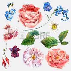 Image result for watercolor flower background