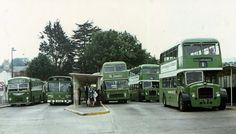 Image result for southern vectis buses
