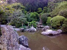 Lago Zen - Recanto Japonês