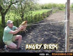 Angry birds versión real