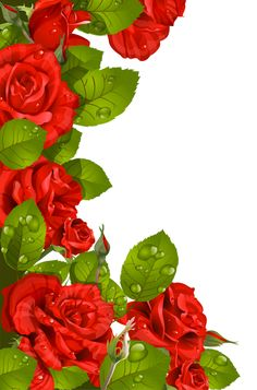 Red Roses Decoration for Frame PNG Clipart