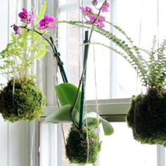 É possível fazer jardim das mais diversas formas, basta que se busque soluções para o tipo de espaço ou ambiente disponível em que se p...