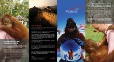 Natural History New Zealand is a New Zealand-based factual television production house creating original content for global broadcasters. NHNZ needed a brochure that could target New Zealand, Ameri. Natural History, Web Design, Movie Posters, Nature Study, Website Designs, Film Posters, Billboard, Site Design