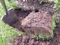 Wenn Du Lehmboden in Deinem Garten hast, kannst Du Dich glücklich schätzen. Die schlechte Nachricht: Dich erwartet harte Arbeit.