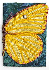 embroidered butterfly wing