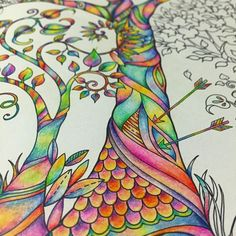 """#workinprogress  #enchantedforest #adultcolouring #johannabasford @johannabasford"""