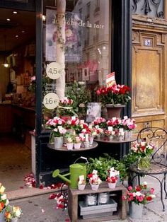 Lovely shop in France