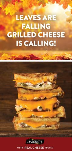 May your autumn be filled crisp weather and Jalapeño Popper Cheddar Grilled Cheese Sandwiches. These sandwiches take buttery brioche bread and layer it with Sharp Cheddar and Parmesan Cheeses, bacon, roasted jalapenos and cream cheese. Basically, this gooey grilled cheese one that will leave you speechless. Get inspired by searching all recipes at Sargento.com.