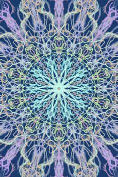 mandala art using mirrorgraph, symmetrical, indian, blue, pink, central