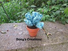 Dony's Creations by Donatella Saralli : Cactus Adromischus _ pattern free italiano