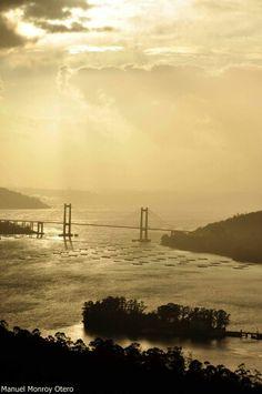 Ría de Vigo. Galicia
