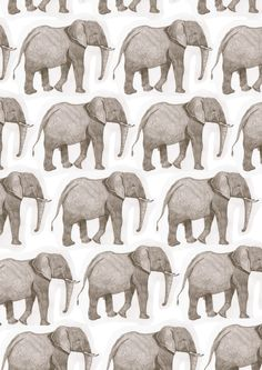 doodoodloo: I used an illustration I did in year 12 to make elephant wallpaper… Elephant Pattern, Elephant Love, Elephant Art, Textile Patterns, Print Patterns, Textiles, Wallpaper Backgrounds, Cute Wallpapers, Iphone Wallpaper
