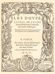 ***A Baroque Style Title Page, 1551. Vintage Book Title Page. Art, Font, Calligraphy, Paris, France. (No. 292). $8.00, via Etsy.