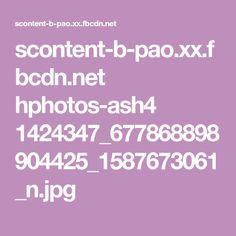 scontent-b-pao.xx.fbcdn.net hphotos-ash4 1424347_677868898904425_1587673061_n.jpg