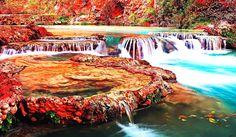Wodospad, Liście, Drzewa