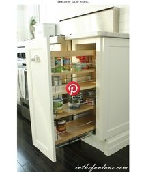 pull out pantry door for lower cabinet