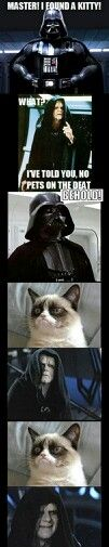 Haha grumpy cat is the new sith lord