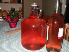 Rhubarb Wine is tasty and easy to make – here's how we turn our Rhubarb into Wine. Right now is the ideal time (mid June) to pick your Rhubarb stalks. When you pick them, you can either twist the stalk (close to the ground) to snap it off or cut it using Wine And Liquor, Wine And Beer, Wine Drinks, Alcoholic Beverages, Drinks Alcohol, Alcohol Recipes, Party Drinks, Beer Brewing, Home Brewing