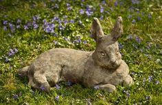 Lawn and Garden Tools Basics Mother Rabbit Statue Garden Whimsy, Love Garden, Cement Art, Bunny Art, Ceramic Animals, Garden Fountains, Garden Features, Pet Memorials, Yard Art