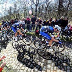 Tom Boonen Tony Martin Paris Roubaix 2016 by rodealabs